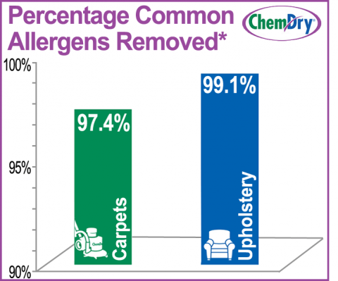 Chem-Dry removes allergens from carpets and upholstery